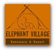Elephant Village - 2013