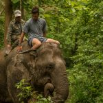 laos-luang-prabang-elephant-village-photo-by-aaron-minks--DSC04814